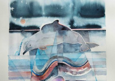 Humpback dolphin jpg