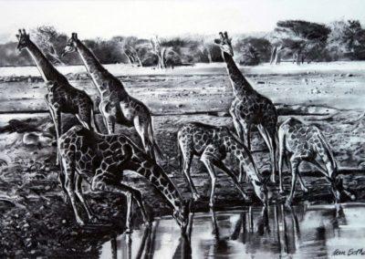 Giraffe reduced